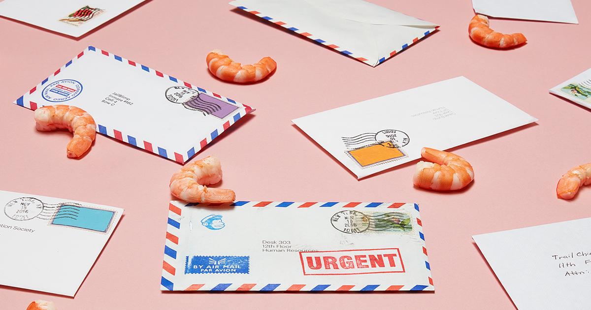 MailShrimp
